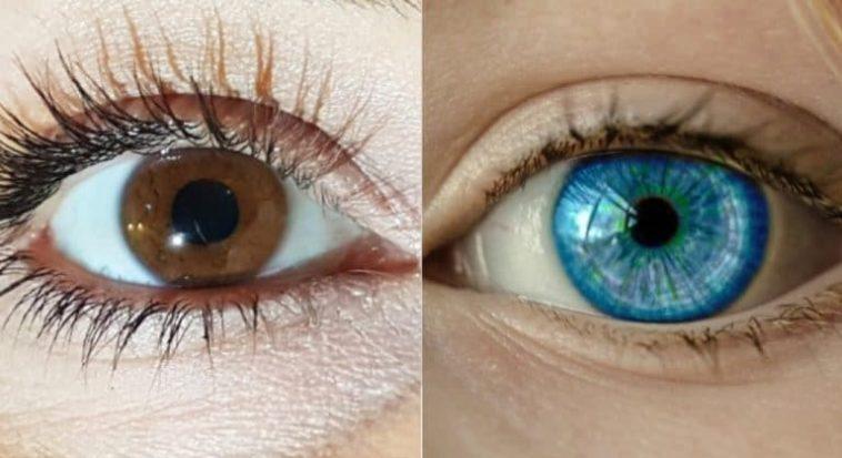 eye colour
